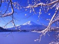 superbe vue apaisante du japon