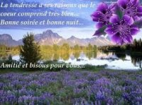892196bonnesoirebisous
