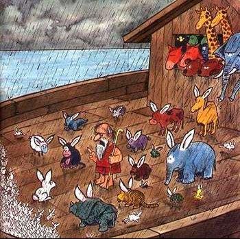 humour-Noe-lapin-cocu