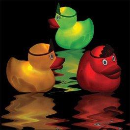 canard-bain-illumine-3