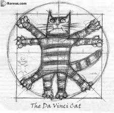 Chat de Vitruve