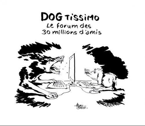 Dogtissimo1
