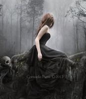 the_empty_forest_by_senderos_olvidados-d5i95xg