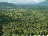 Sri Lanka - vue depuis le rocher