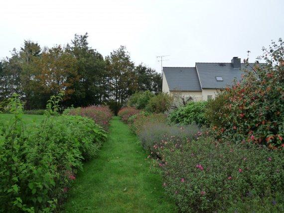 jardin de sauges & collection nationale chez Buchananii Sauges-2012-massif-arbustives-2012-img