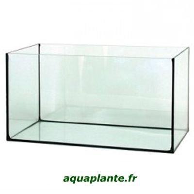 divers-aquarium-cuve-nue-img