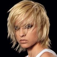 cheveux-courts-le-court-blond-effile-de-michel-dervyn-2566313_2041
