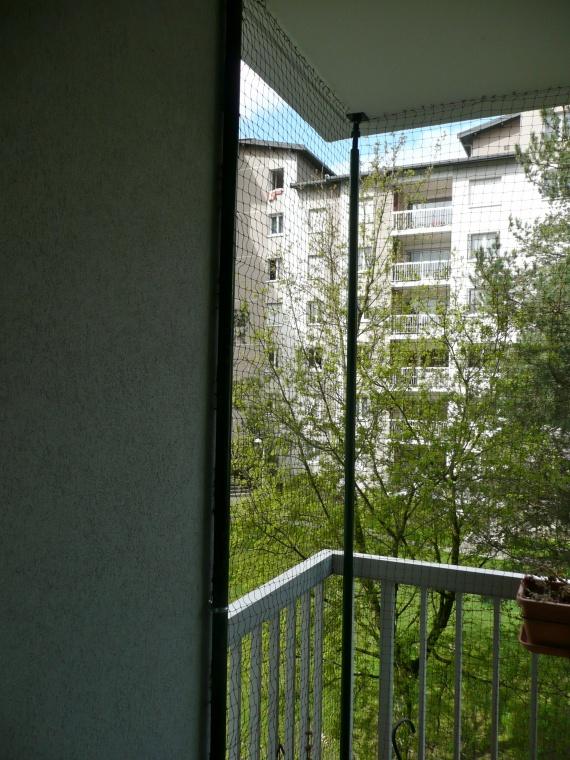 protection balcon terrasse fen tre chats forum animaux. Black Bedroom Furniture Sets. Home Design Ideas
