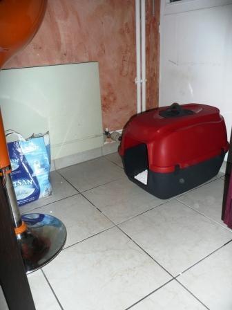 maison de toilette 2