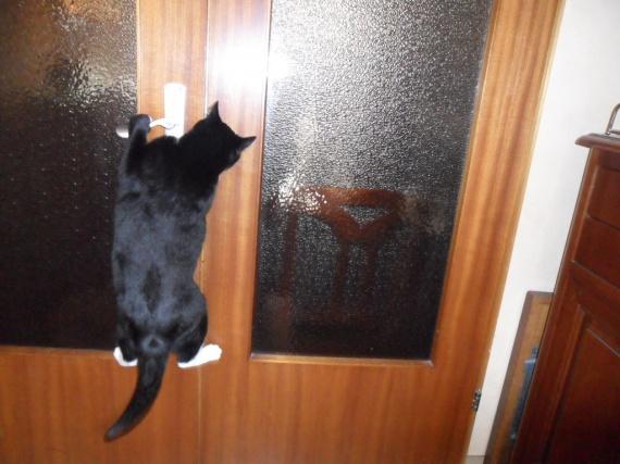 ouvre la porte