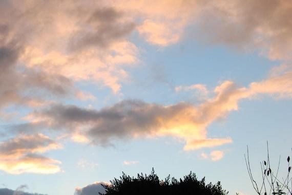 soleil de décembre14