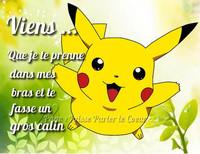 calins_024