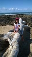 Léna, plage de la mine à Jards sur mer
