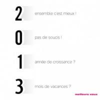 2013-humoristique_xlarge