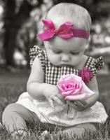 pour toi cette rose