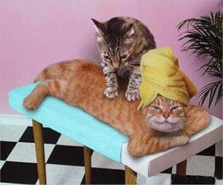un bon massage ca fait du bien