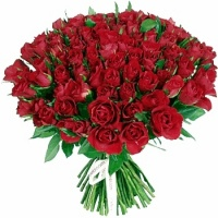 rose rouge pour toi