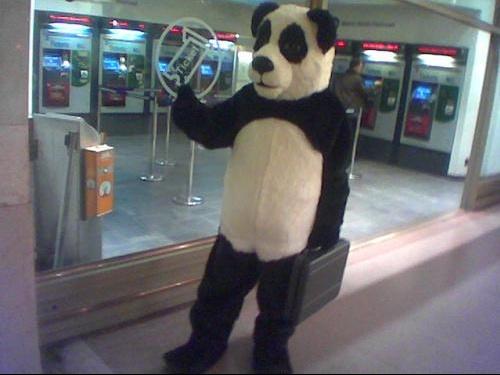 panda222