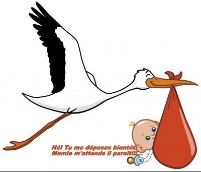 bebe-cigogne