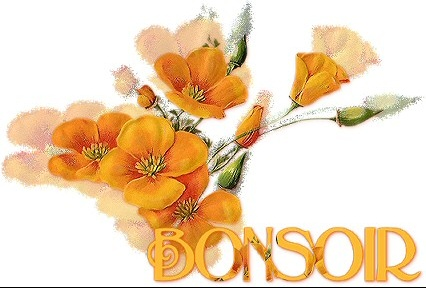 BONSOIR%207