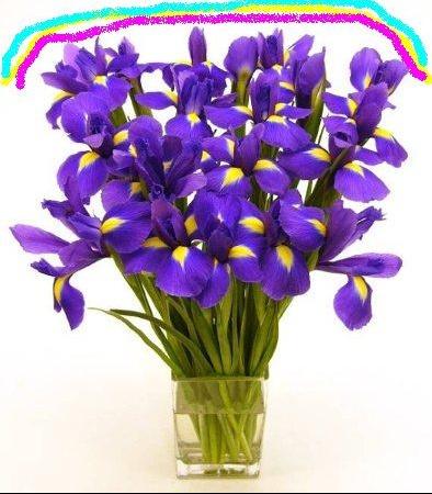 bouquet%20d'iris