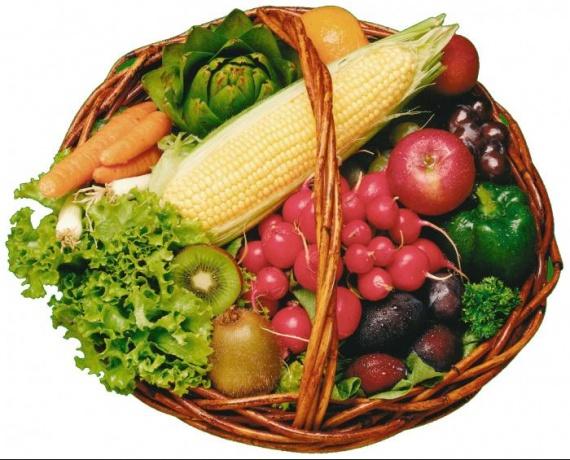 chronicsaddict_primeurs-fruits-legumes-bio-ecologique_basket_of_fruit_and_veg