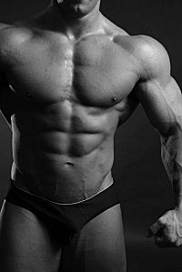 Muscles-homme