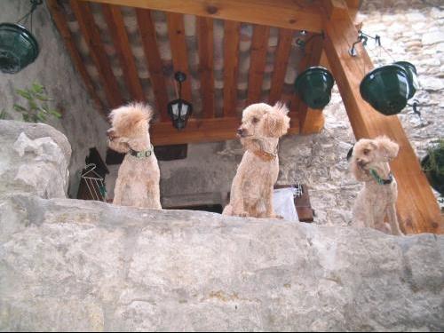 vacances 2005- Ardeche-Vias 032