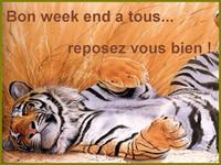 week_end_joliecarte11