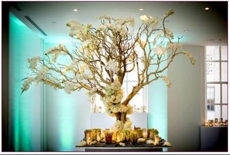 idee deco arbre mariage img salle et d co patoo5mai photos club doctissimo. Black Bedroom Furniture Sets. Home Design Ideas