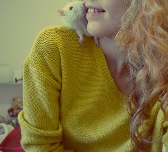 Ma petite Bistrot ♥