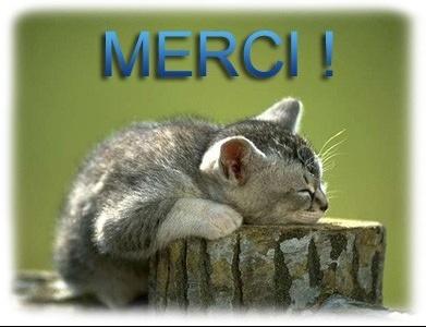 mercichat