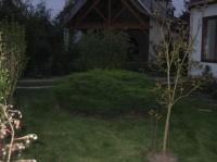 Le jardin devant la maison 2