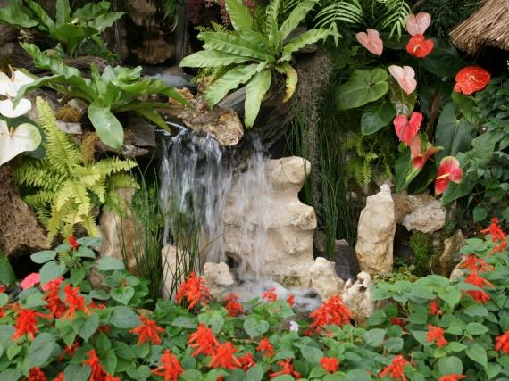 Fleurs tropicales 12