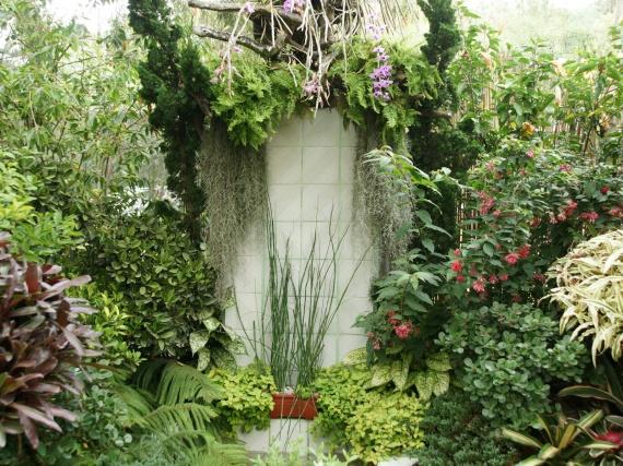 Fleurs tropicales 34