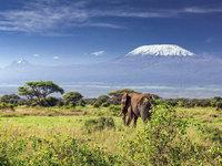 le-kilimandjaro-en-tanzanie_620x465