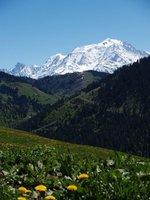 le-mont-blanc-en-france-152098
