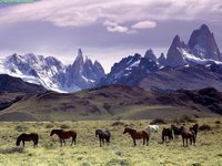 Andes Mountains, Patagonia, Argentina