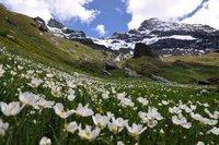 Aosta-Aoste, Italy