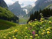 Austria 02
