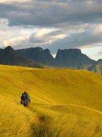 Drakensberg, Afrique du sud
