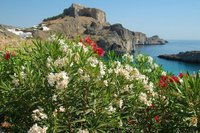 Island of Rhodes, Dodecanese