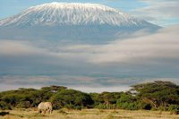 Kilimanjaro (002)