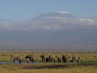 Kilimanjaro 02