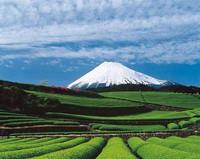 Mount Fuji, Japan (02)