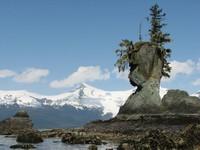 Natural Rock Face, Petersburgh, Alaska
