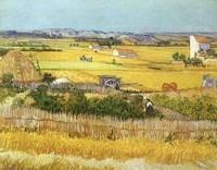 Van Gogh - Dans la chaleur estivale