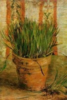 Van Gogh - Ciboulettes dans un pot