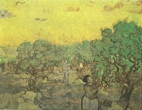Van Gogh - La récolte des olives