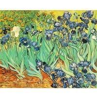 Van Gogh - Les iris